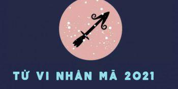 Tử vi Nhân Mã 2021: Sự nghiệp, tiền bạc, tình yêu, sức khỏe, học tập